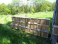 Пчелопакеты карпатской породы на весну 2017 года с доставкой