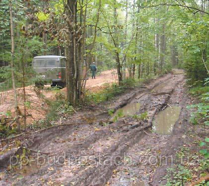 Укладання геотекстилю в лісовому масиві