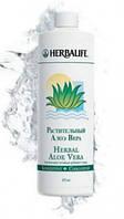 Растительный Концентрат Алоэ Вера Гербалайф напиток противовоспалительного и успокаивающего действия.