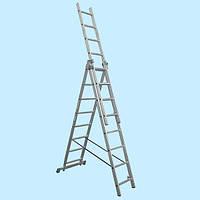 Универсальная лестница Tarko ECO 01307 3×7 (4.3 м)