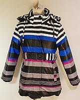 Куртка для девочек (весенняя, осенняя, разноцветная) оптом и в розницу