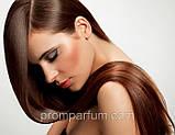 """Бальзам-шелк для улучшения эластичности волос """"Живой Шелк"""" Белита Biеlita, Витэкс (Беларусь) 450 RBA /37-83, фото 5"""