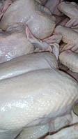 Мясо куриное, тушка , филе, четверть, разделка, субпродукты. Замороженное и охлажденное