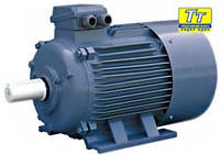Электродвигатель АИР100S2 4 кВт/3000