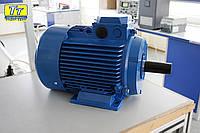 Электродвигатель АИР315М8 110кВт/750
