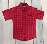 Рубашка с коротким рукавом на мальчика красная Турция на 6, 7, 8, 9, 10 лет