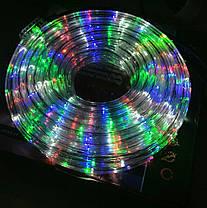 Гирлянда уличная лента светодиодная (LED) 10 м, фото 2