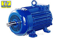 Электродвигатель МТН (F) 111 3,5кВт/1000