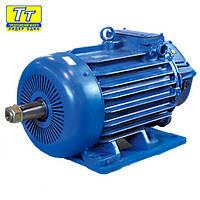 Электродвигатель 4МТН (F) 132 5,5кВт/1000