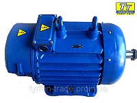 Электродвигатель 4МТМ (F) 225 37кВт/750
