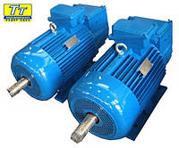 Электродвигатель 4МТМ (F) 225 30кВт/750