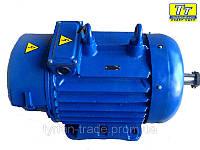 Электродвигатель 4МТН (F) 280 110кВт/1000