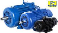 Электродвигатель 4МТН (F) 280 45кВт/600