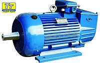 Электродвигатель 4МТН (F) 280 60кВт/600