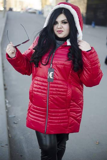 Зимняя куртка больших размеров София красная