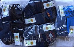 Носки стрейчевые с махрой на мальчиков тм Эко Червоноград р20-22(9-10)