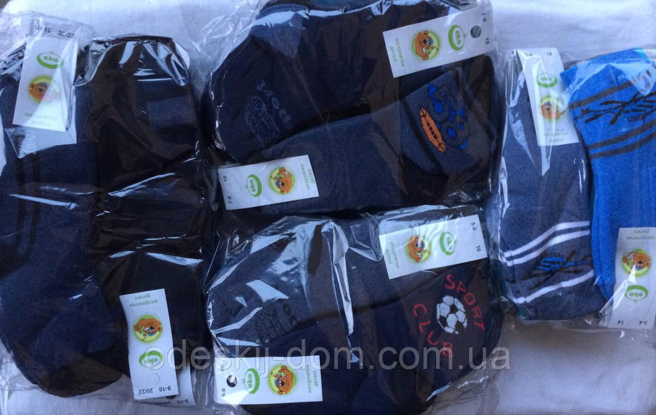 Шкарпетки стрейчеві з махрою на хлопчиків тм Еко Червоноград р16(5-6)