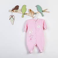 Велюровый человечек-комбинезон с вышивкой для новорожденной девочки р. 56 ТМ  Фламинго 501-512