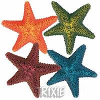 Морские звезды 9 см 8866 Трикси