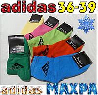 """Носки женские махровые х/б """"Adidas""""  Турция 36-39р. ассорти цветное НЖЗ-01321"""