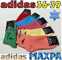 """Носки женские махровые х/б """"Adidas""""  Турция 36-39р. ассорти цветное НЖЗ-01320"""
