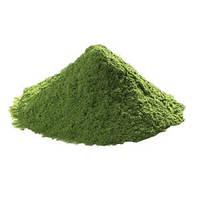 Порошок из зеленой фасоли 0,5кг