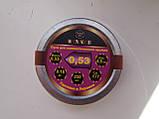 Кулі 4,5 мм Winner 0,53 г остр. (250 шт.), фото 2