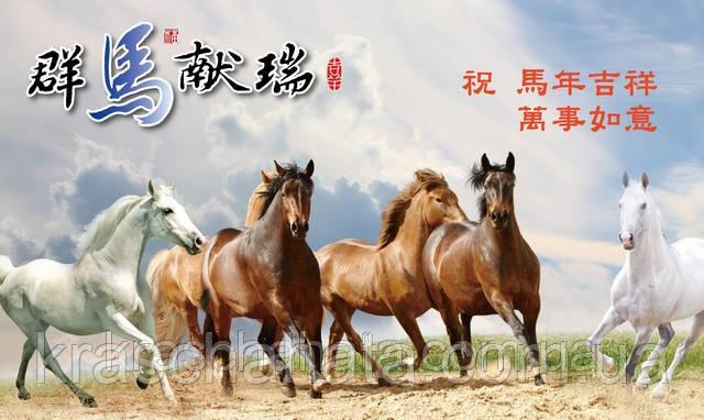 Китайский Новый год 2014: Год Лошади