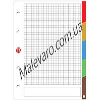 Сменный блок для регистратора,  формат А -4, 50 листов, клетка,   5 разделитей, разноцветные  поля.