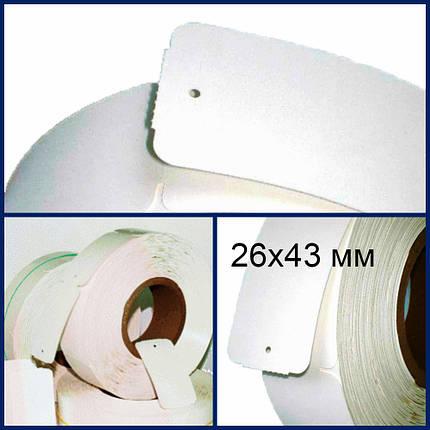 Ярлыки (бирки) картонные навесные в рулонах 26х43, 10 шт., фото 2
