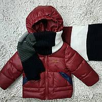 Куртки зимние, фото 1
