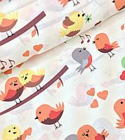 Хлопковая ткань польская птички на коричневых ветках