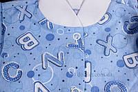 Кофта теплая 62 размер Кнопка  Габби 8509 р.62 голубой буквы