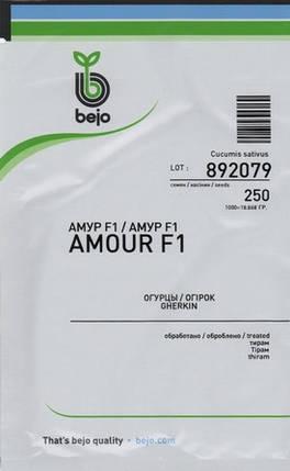 Семена огурца Амур F1 (Бейо/Bejo), 250 семян — ультраранний гибрид (40-45 дней), партенокарпик, фото 2