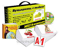 """Подарочный набор МЕГА чемодан 2013 """"Вундеркинд с пелёнок""""+DVD+Лото, фото 1"""