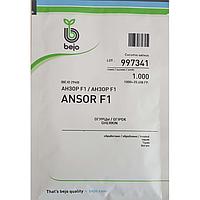Семена огурца Анзор F1 (Бейо / Bejo) 1000 семян - партенокарпик, ультра-ранний гибрид (40-45 дней)