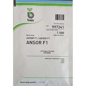 Семена огурца Анзор F1 (Бейо/Bejo), 1000 семян — ультраранний гибрид (40-45 дней), партенокарпик , фото 2