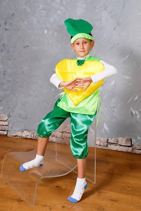 4eba04c5bb4e Детский карнавальный костюм Репка - Цена 260 грн. Купить оптом и в ...