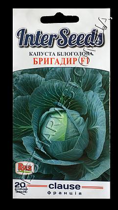 Семена капусты Бригадир F1 20 семян, фото 2