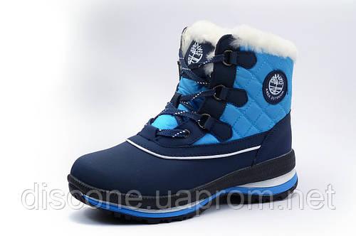 Зимние ботинки унисекс ANDA, темно-синие с голубым