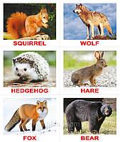 """Набор карточек  """"Лото. Animals""""  (англ.) с играми"""