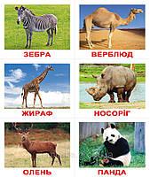"""Набор карточек  """"Лото. Тварини""""  (укр.) с играми від 1 року, фото 1"""