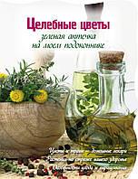 Васильев М. Зеленая аптека на моем подоконнике (Вырубка. Цветы в саду и на окне (обложка))