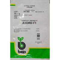 Семена огурца Акорд F1 / Аккорд F1 (Бейо / Bejo) 10 г - пчелоопыляемый,  ультра-ранний гибрид (40-45 дней), фото 2