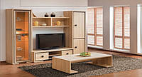 """Модульная система для гостиной """"Николь"""", Мебель для гостиной Славутич"""