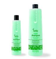 Шампунь с ментолом Echosline Mint Shampoo 350 мл