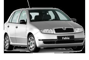 Тюнинг и автокомплектующие Skoda Fabia (2000-2014)