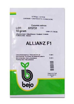 Семена огурца Альянс F1 / Allianz F1 (Бейо / Bejo) 10 г - пчелоопыляемый,  ультра-ранний гибрид (40-45 дней), фото 2
