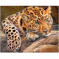 """Картина для рисования камнями Diamond painting """"Взгляд леопарда"""", фото 1"""