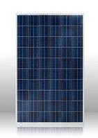 Солнечная панель Perlight Solar  10 Вт поликристал